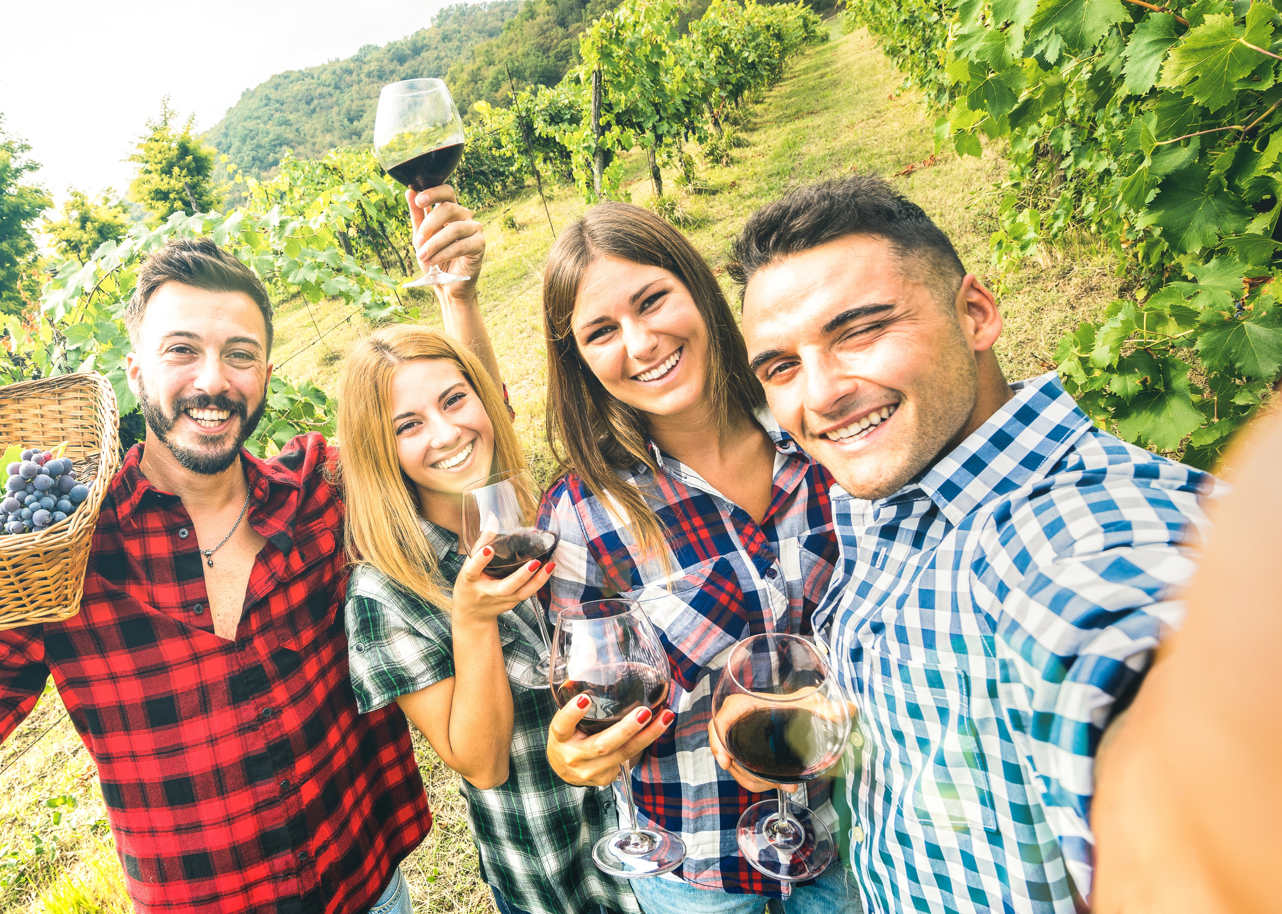 Young People in Vineyard Drinking Wine