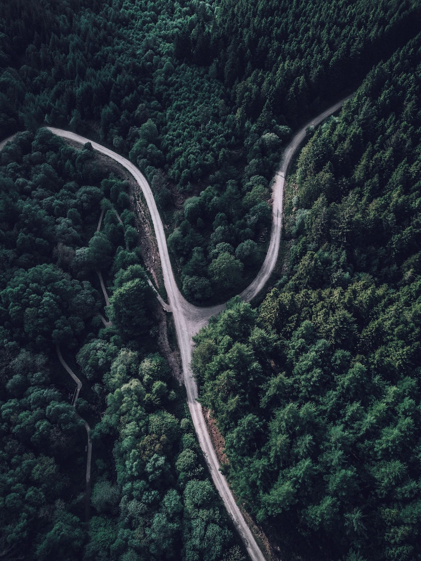 Tree Covered Mountain with Forked Road